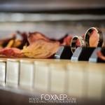 foxaep-mariage-30-08-14-2014-law-tag-3836